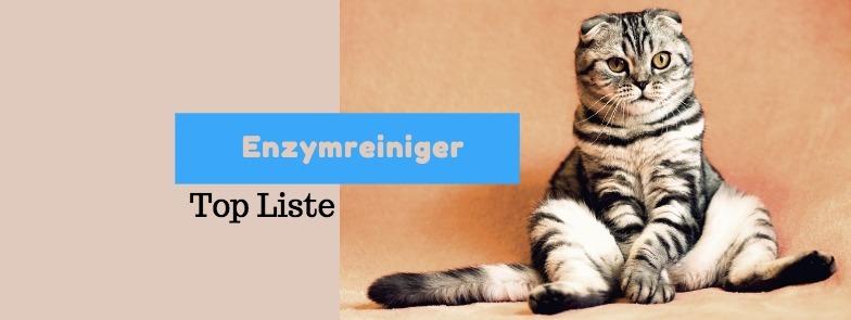 enzymreiniger katzenurin